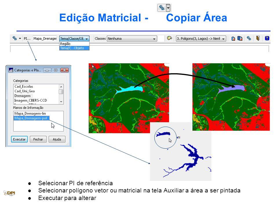 Edição Matricial - Copiar Área