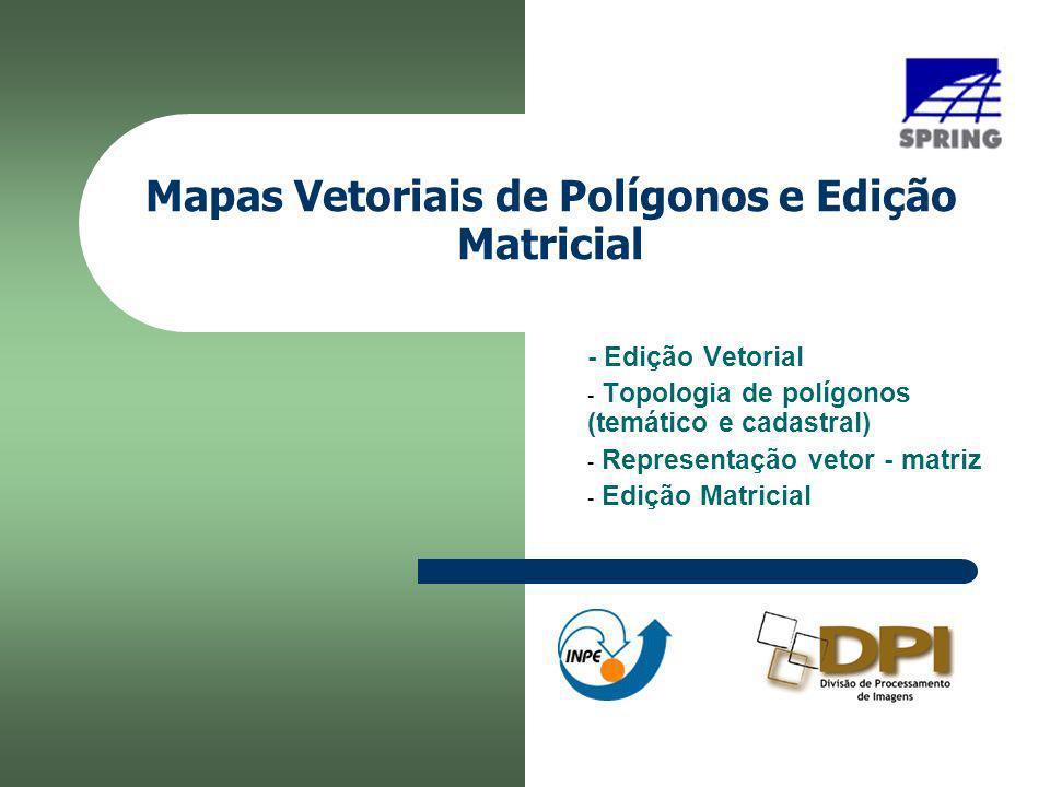 Mapas Vetoriais de Polígonos e Edição Matricial