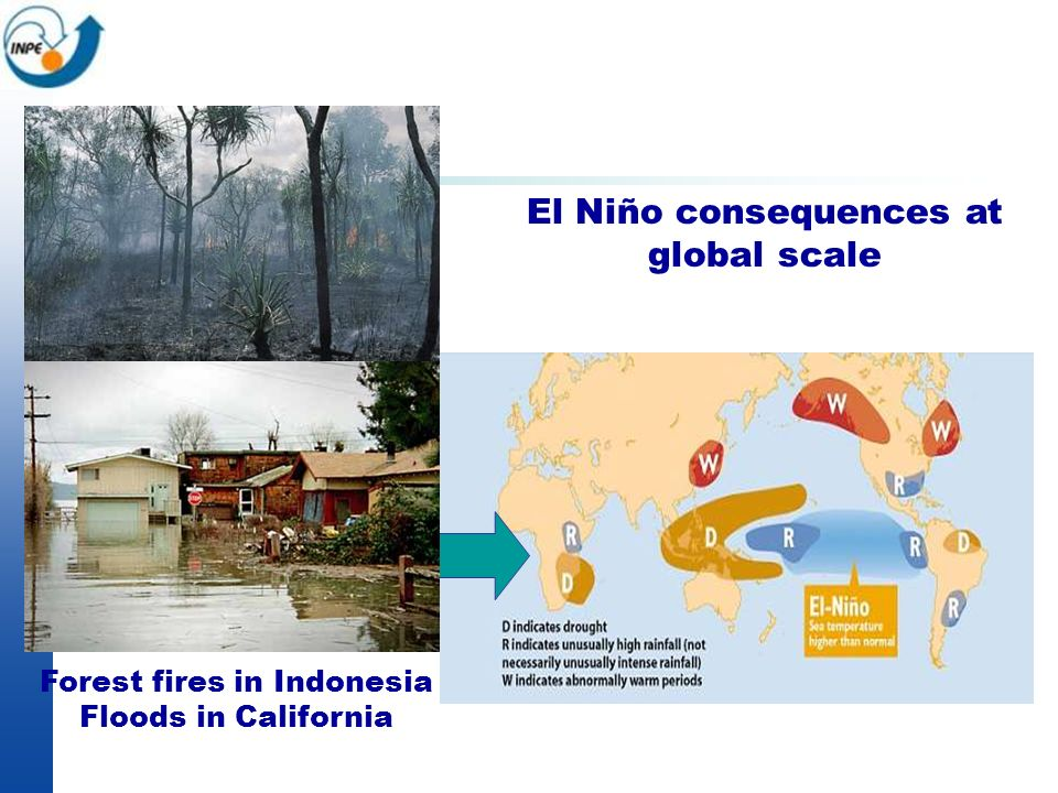 El Niño consequences at global scale