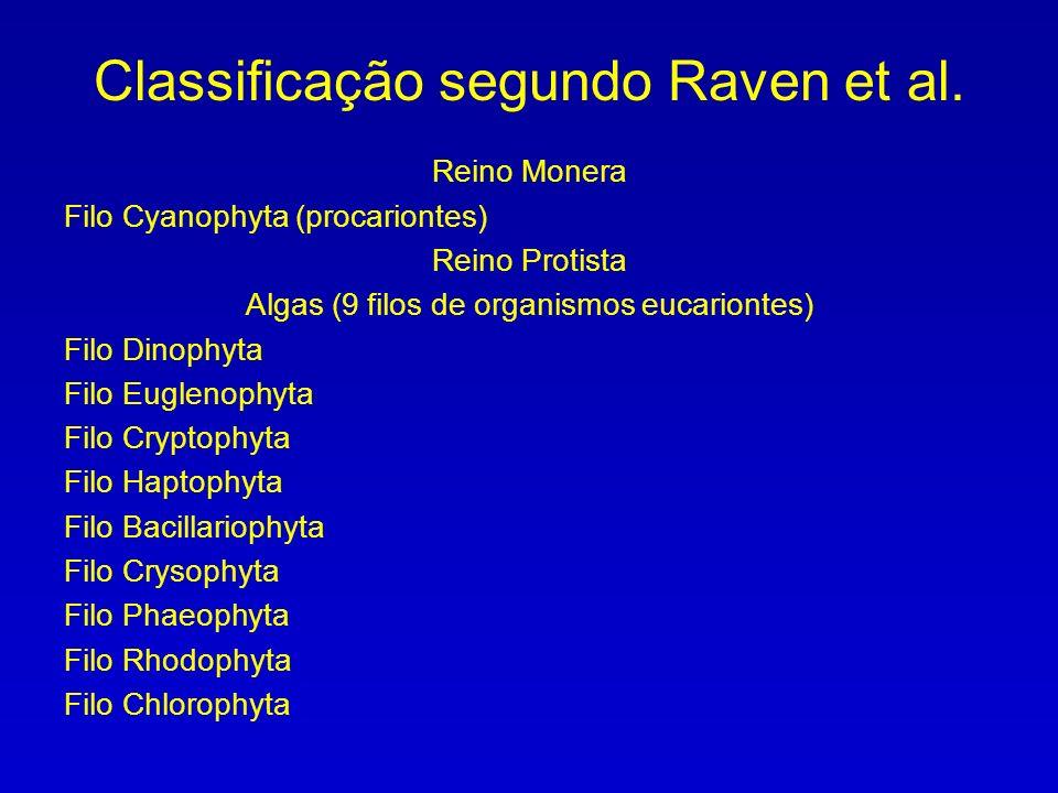 Classificação segundo Raven et al.