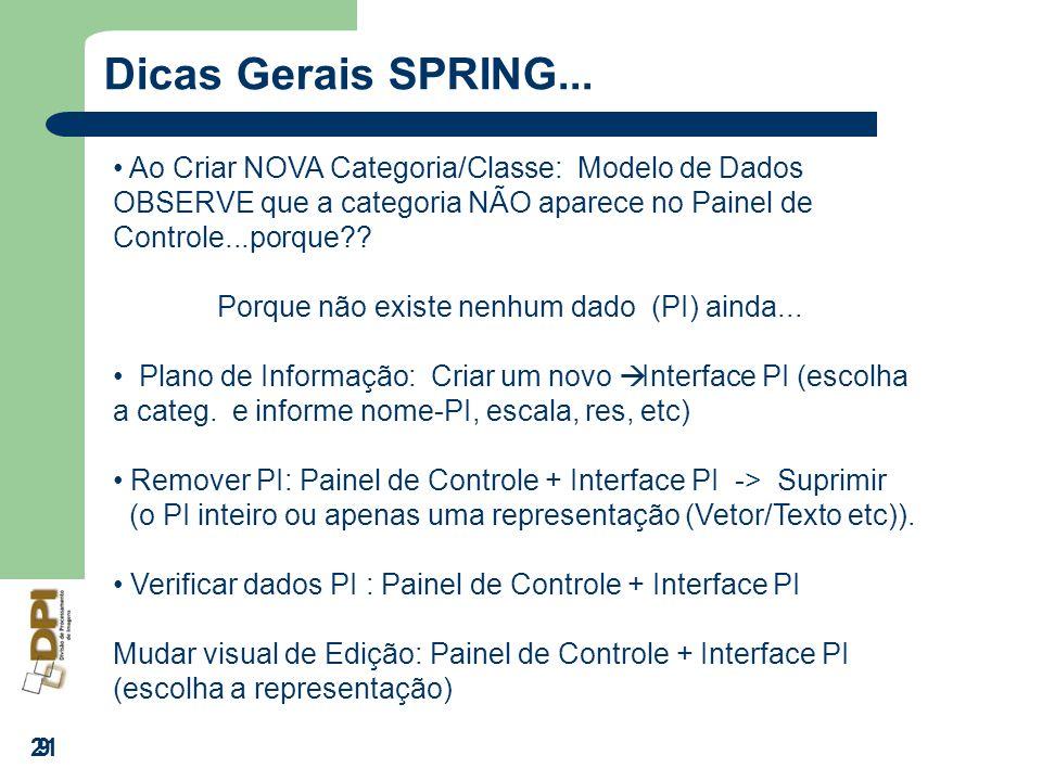 Dicas Gerais SPRING... Ao Criar NOVA Categoria/Classe: Modelo de Dados