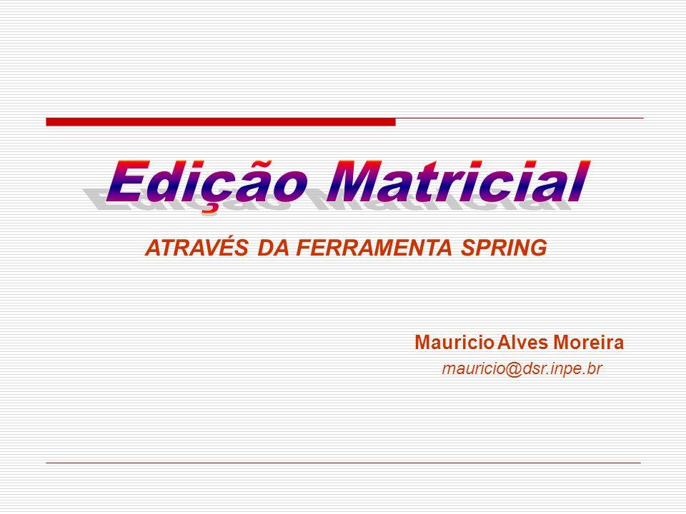 Edição Matricial ATRAVÉS DA FERRAMENTA SPRING Mauricio Alves Moreira