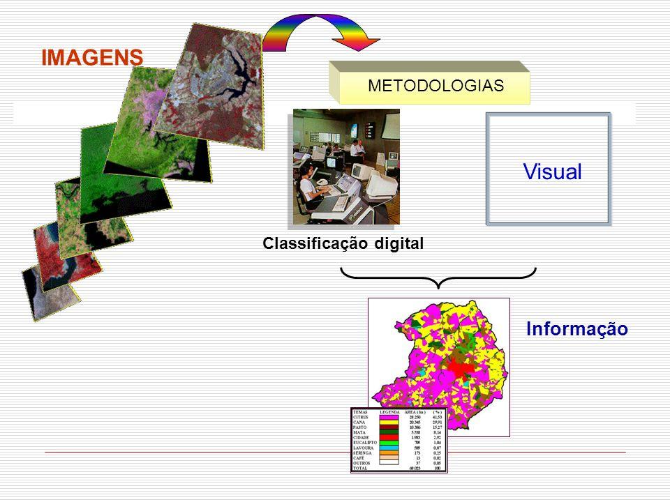 IMAGENS METODOLOGIAS Visual Classificação digital Informação
