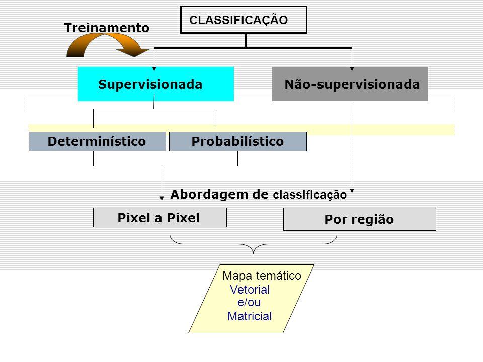 CLASSIFICAÇÃO Treinamento. Supervisionada. Não-supervisionada. Determinístico. Probabilístico. Abordagem de classificação.
