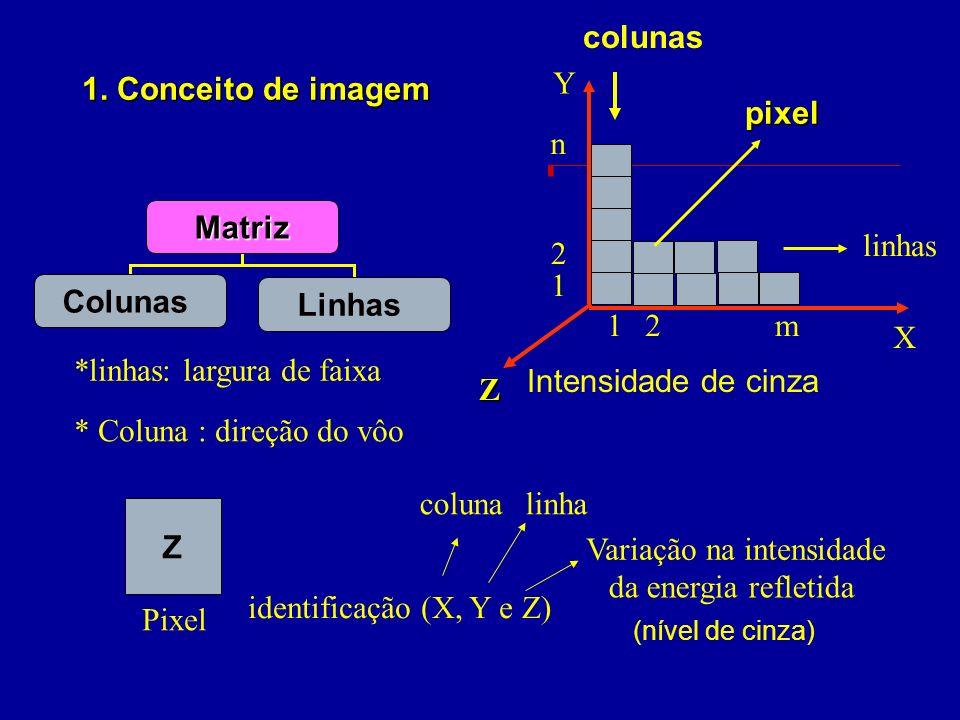 Matriz Colunas Linhas Z