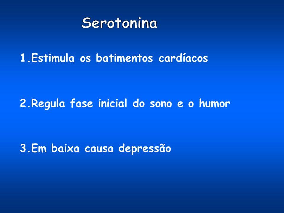 Serotonina 1.Estimula os batimentos cardíacos