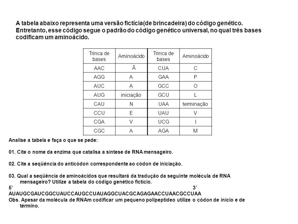 A tabela abaixo representa uma versão fictícia(de brincadeira) do código genético. Entretanto, esse código segue o padrão do código genético universal, no qual três bases codificam um aminoácido.