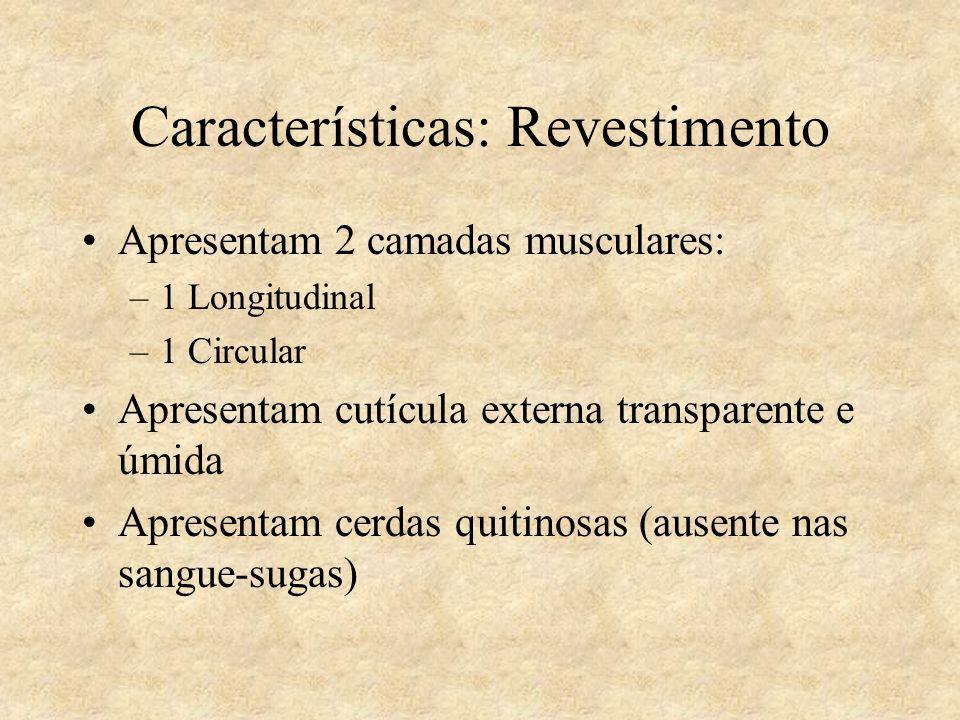 Características: Revestimento