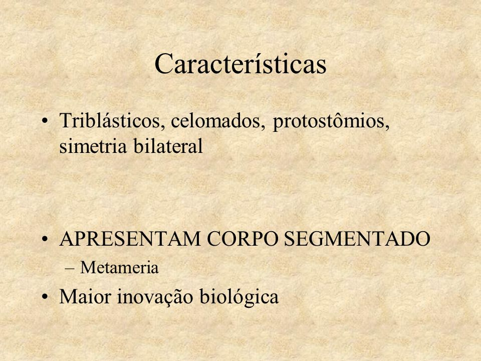 Características Triblásticos, celomados, protostômios, simetria bilateral. APRESENTAM CORPO SEGMENTADO.