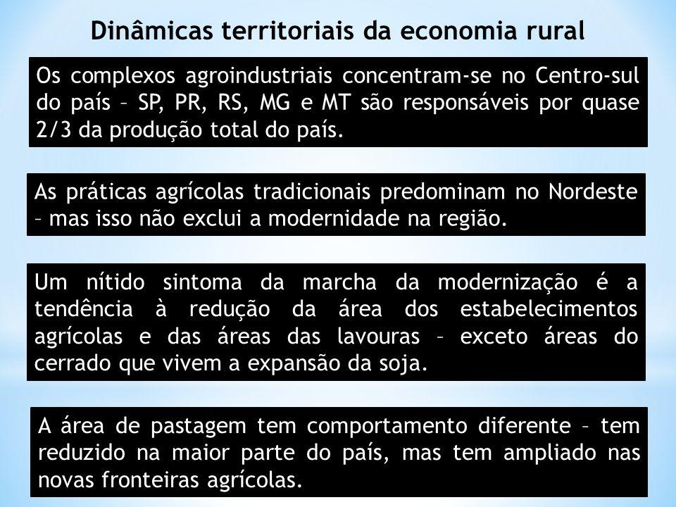 Dinâmicas territoriais da economia rural