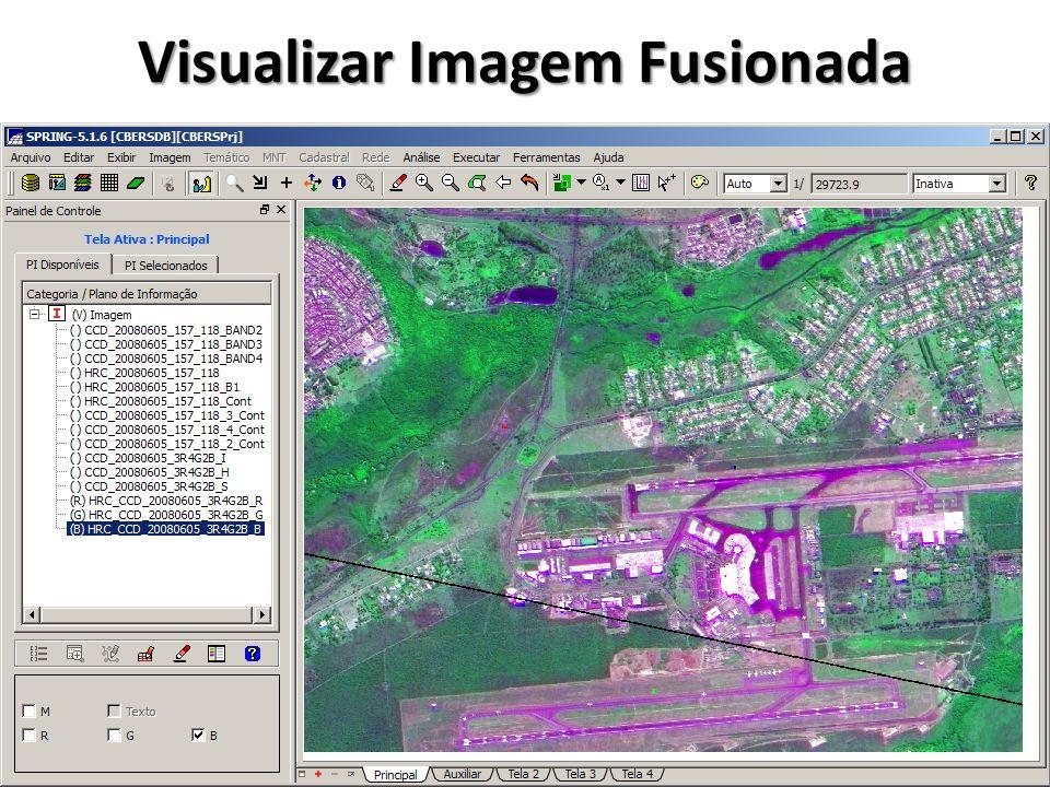 Visualizar Imagem Fusionada