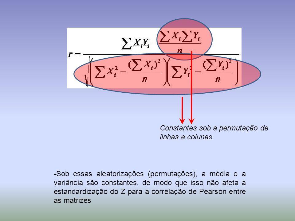 Constantes sob a permutação de linhas e colunas