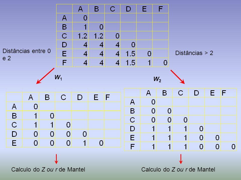 Distâncias entre 0 e 2 Distâncias > 2 W1 W2 Calculo do Z ou r de Mantel Calculo do Z ou r de Mantel