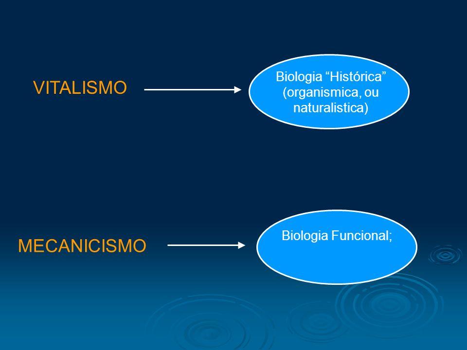 Biologia Histórica (organismica, ou naturalistica)