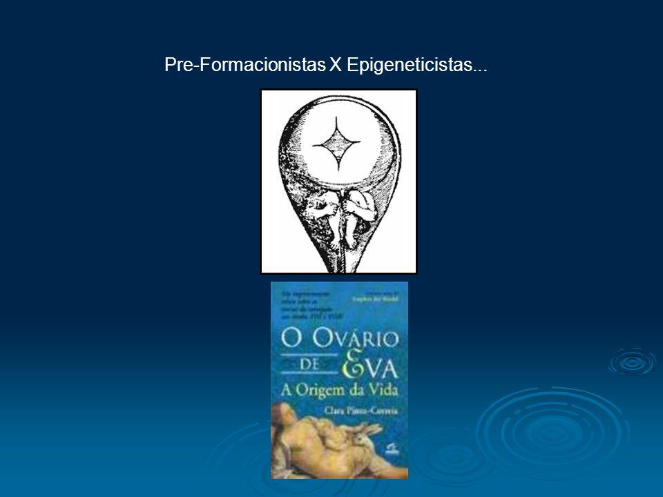Pre-Formacionistas X Epigeneticistas...