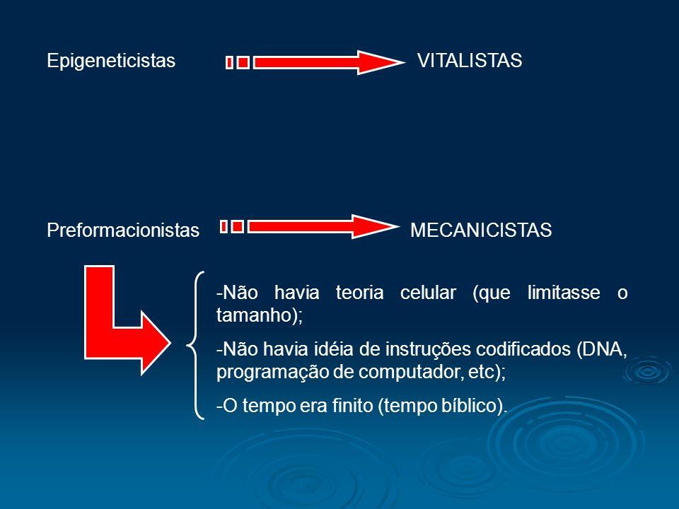 Epigeneticistas VITALISTAS