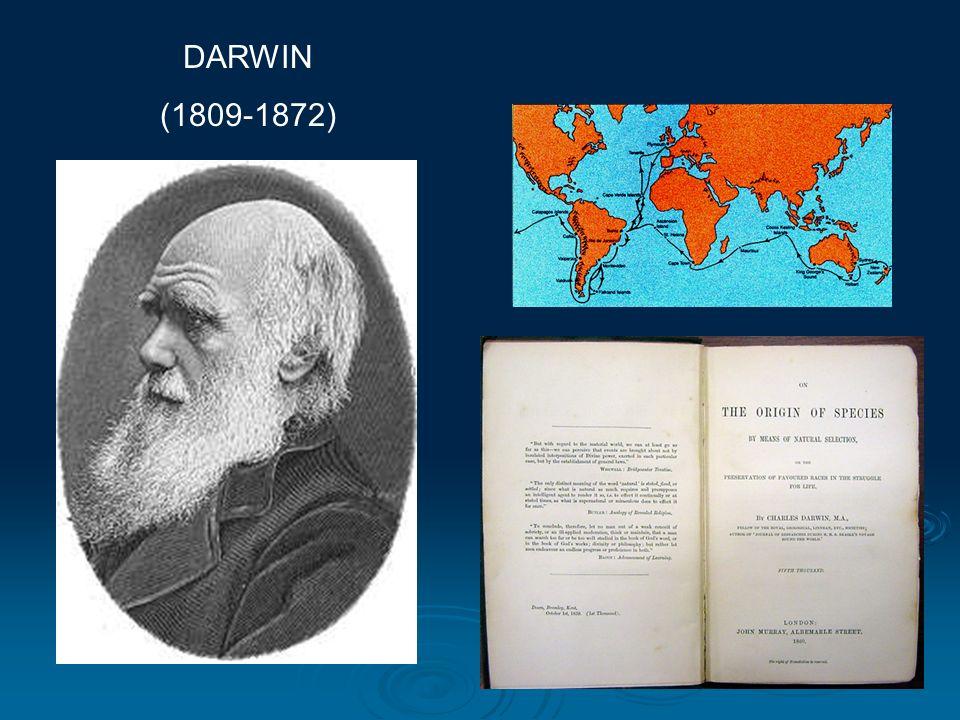 DARWIN (1809-1872)