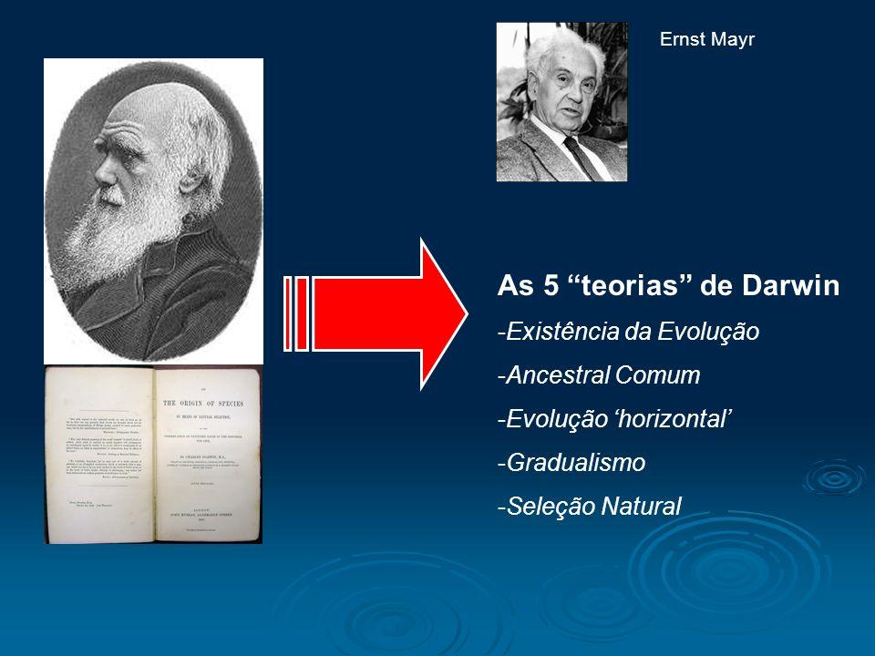 As 5 teorias de Darwin Existência da Evolução Ancestral Comum