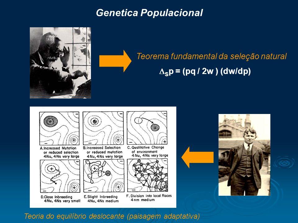 Genetica Populacional