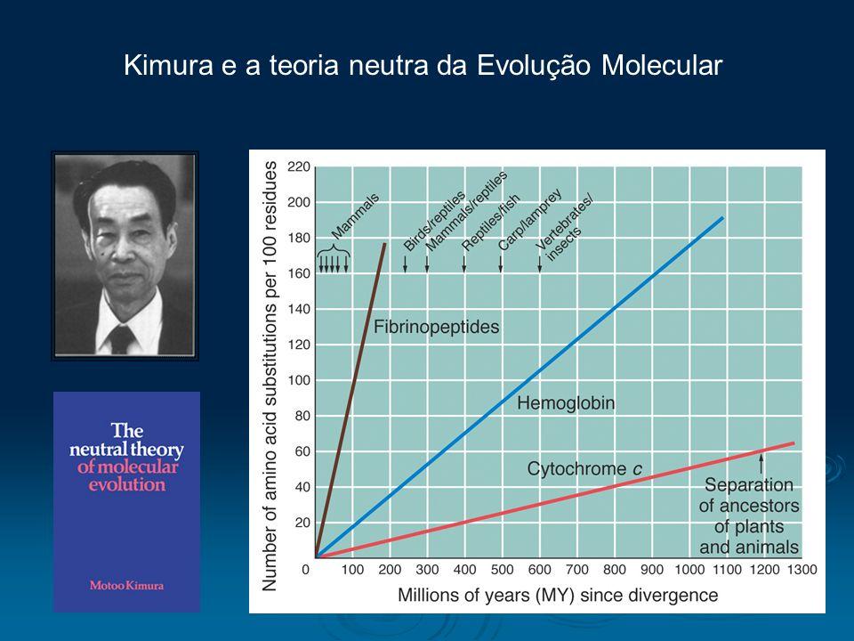 Kimura e a teoria neutra da Evolução Molecular