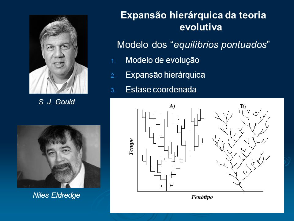 Expansão hierárquica da teoria evolutiva