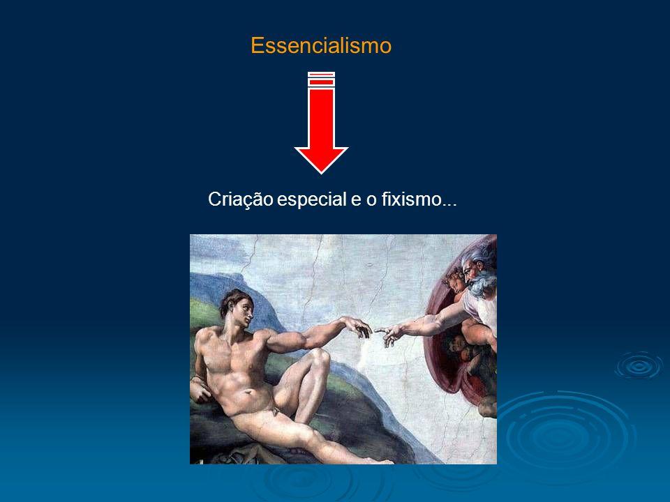 Criação especial e o fixismo...