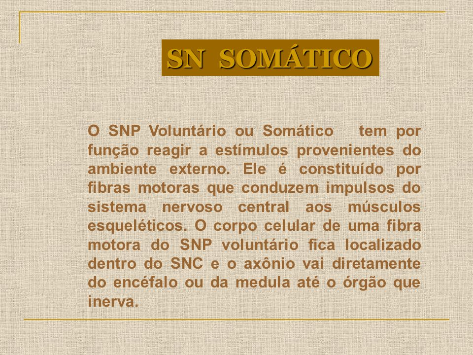 SN SOMÁTICO