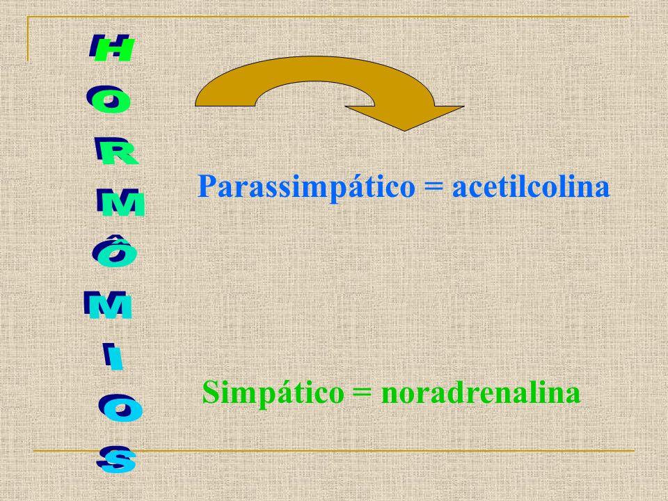 Parassimpático = acetilcolina