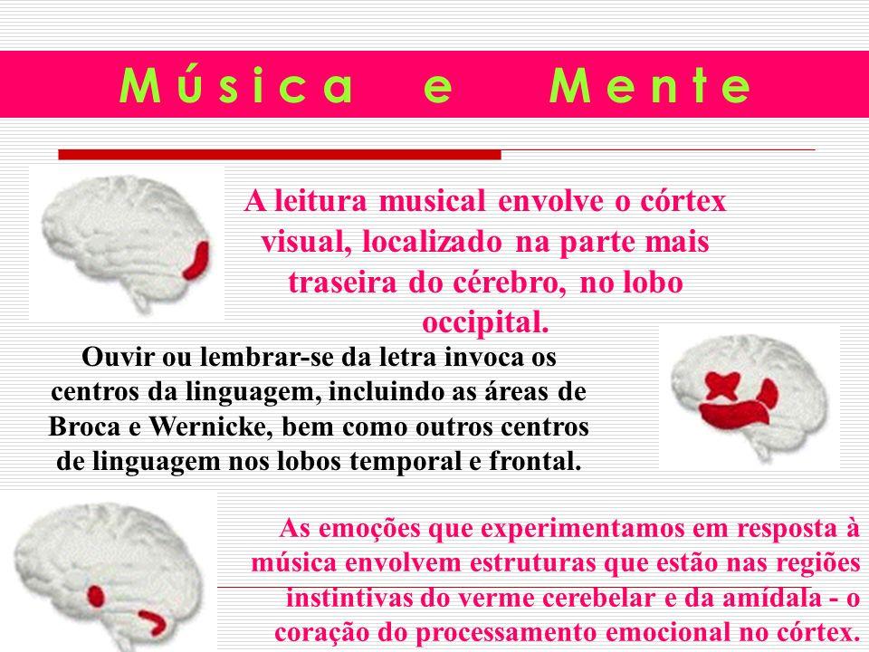 M ú s i c a e M e n t e A leitura musical envolve o córtex visual, localizado na parte mais traseira do cérebro, no lobo occipital.