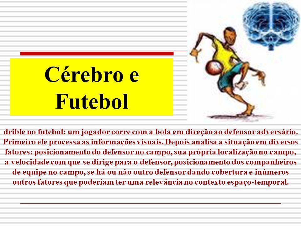 Cérebro e Futebol