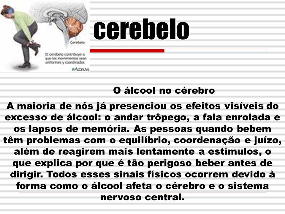 cerebelo O álcool no cérebro