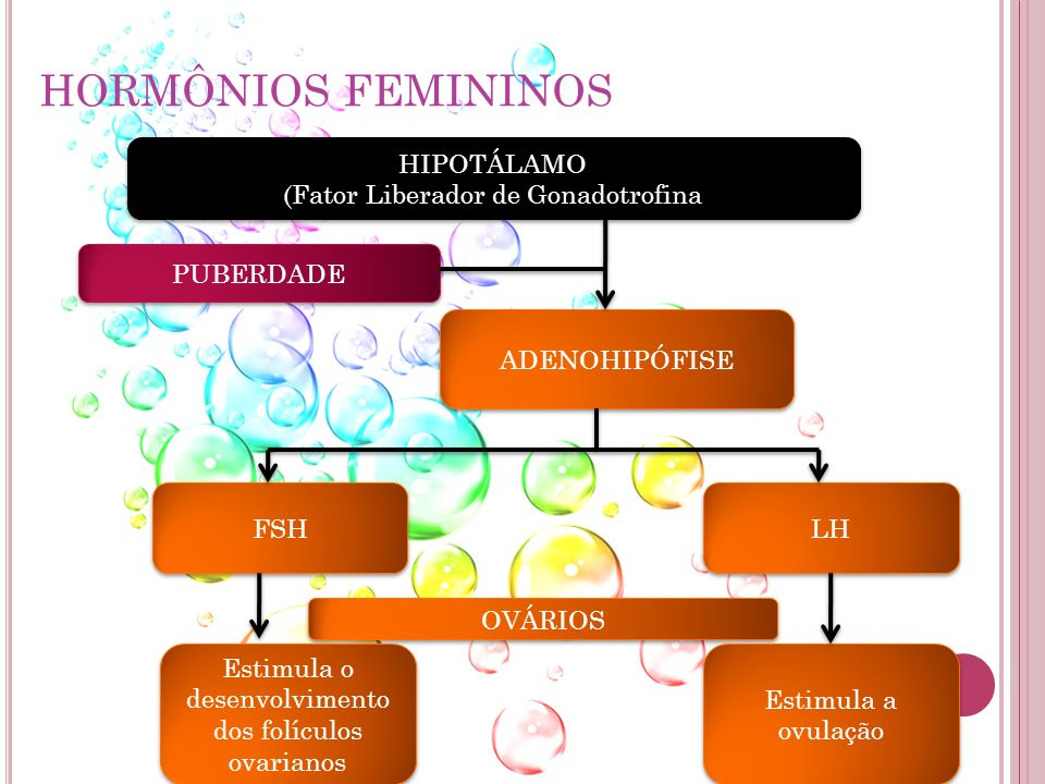 HORMÔNIOS FEMININOS HIPOTÁLAMO (Fator Liberador de Gonadotrofina