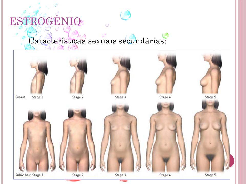 ESTROGÊNIO Características sexuais secundárias: