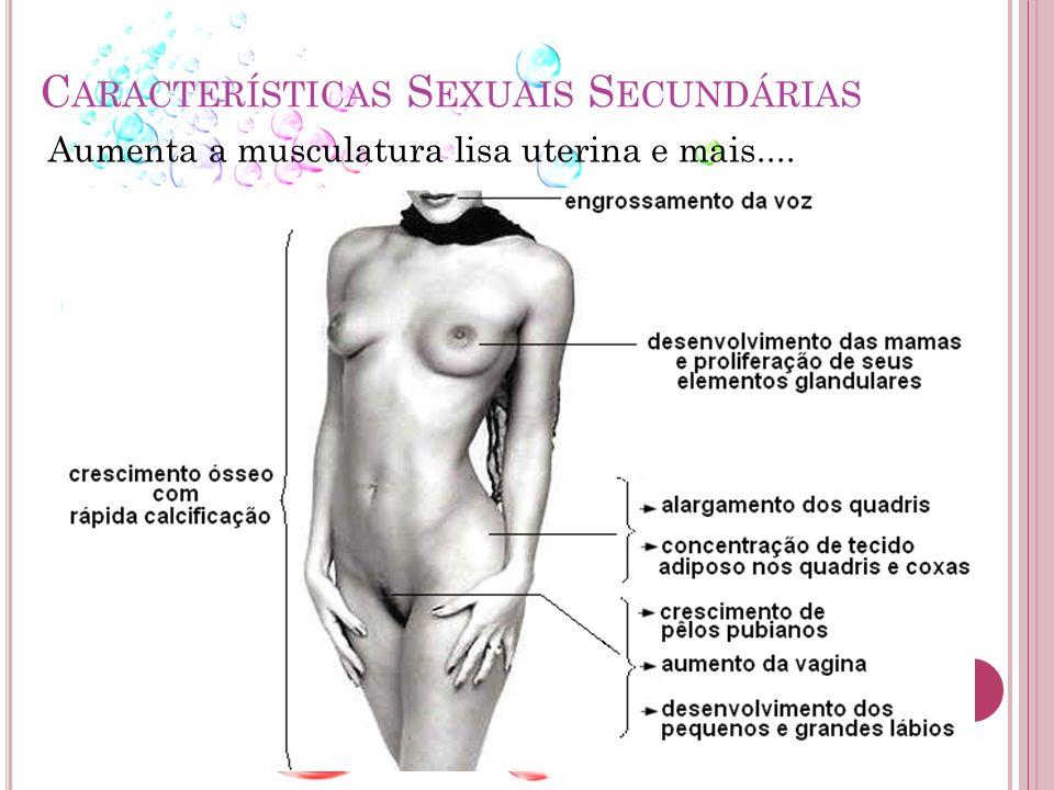 Características Sexuais Secundárias