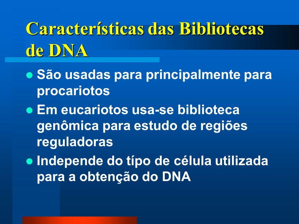 Características das Bibliotecas de DNA
