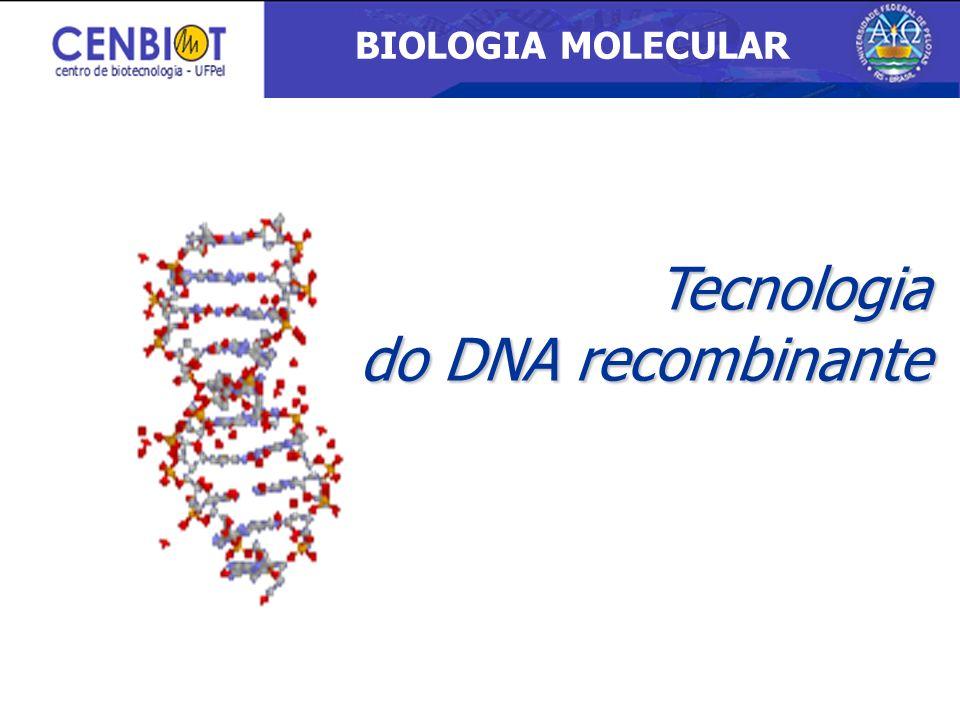 BIOLOGIA MOLECULAR 3/26/2017 Tecnologia do DNA recombinante