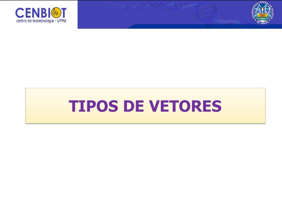 3/26/2017 TIPOS DE VETORES