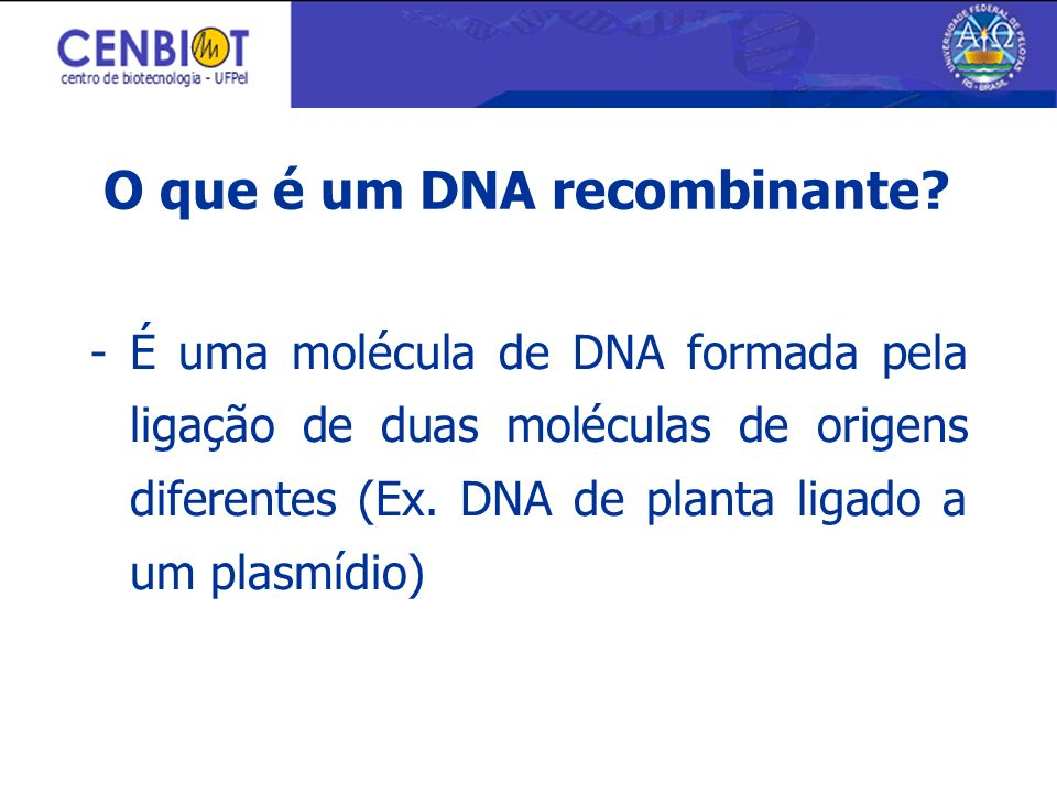 O que é um DNA recombinante