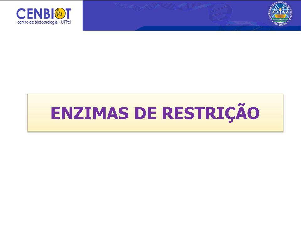 3/26/2017 ENZIMAS DE RESTRIÇÃO