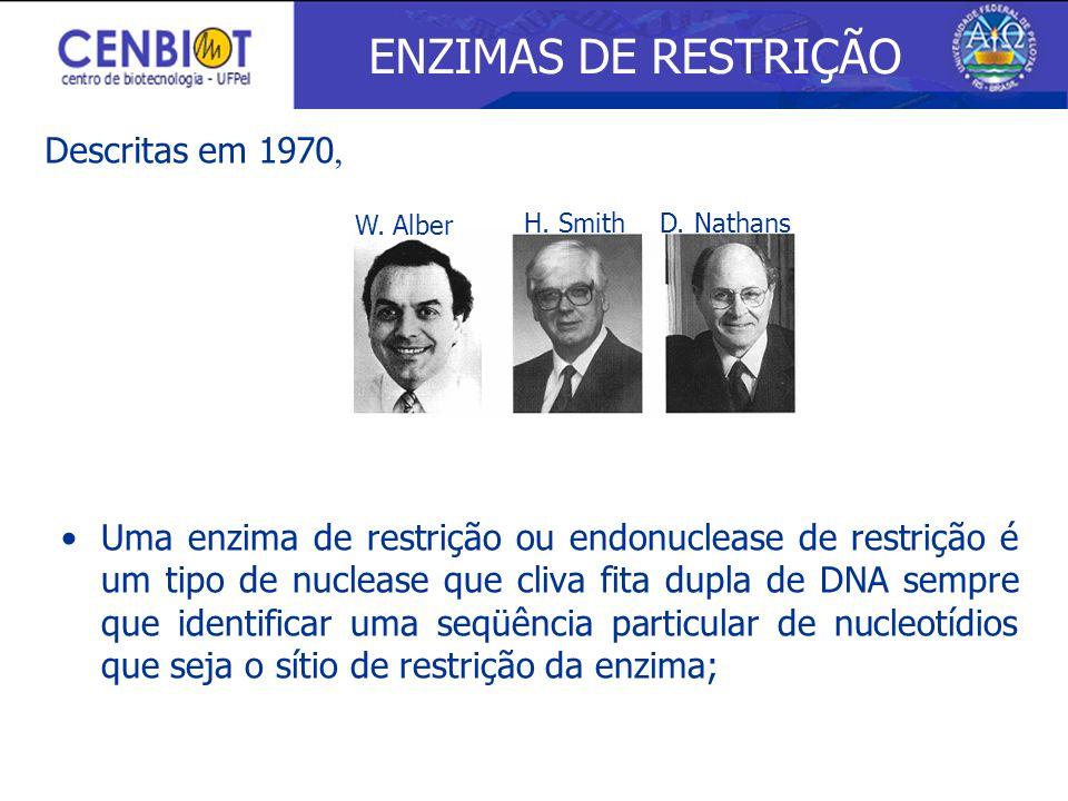 ENZIMAS DE RESTRIÇÃO Descritas em 1970,
