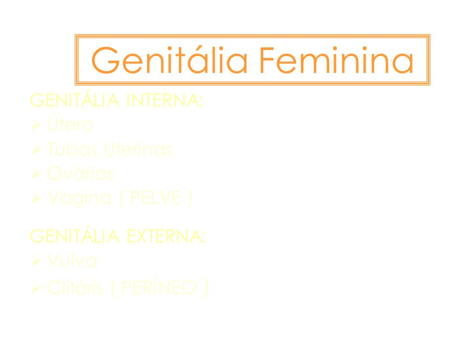 Genitália Feminina GENITÁLIA INTERNA: Útero Tubas Uterinas Ovários