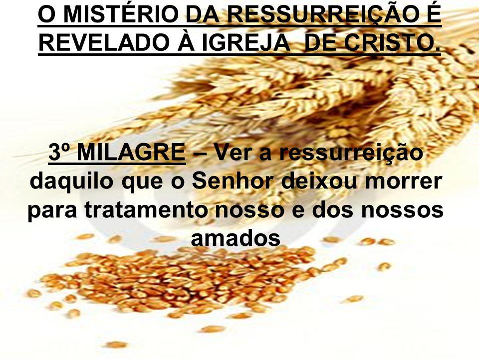 O MISTÉRIO DA RESSURREIÇÃO É REVELADO À IGREJA DE CRISTO.
