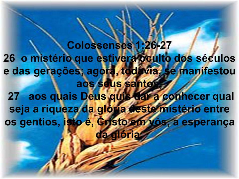 Colossenses 1:26-27 26 o mistério que estivera oculto dos séculos e das gerações; agora, todavia, se manifestou aos seus santos; 27 aos quais Deus quis dar a conhecer qual seja a riqueza da glória deste mistério entre os gentios, isto é, Cristo em vós, a esperança da glória;