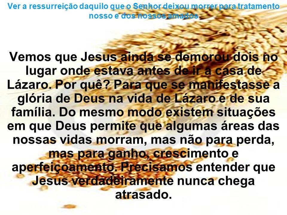 Ver a ressurreição daquilo que o Senhor deixou morrer para tratamento nosso e dos nossos amados
