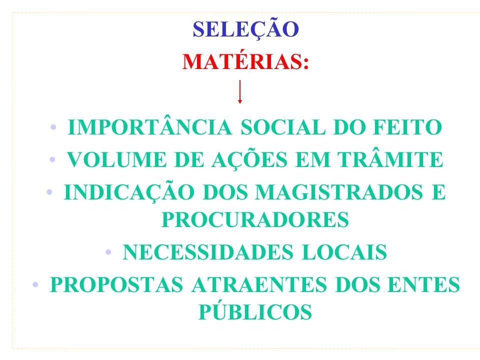 IMPORTÂNCIA SOCIAL DO FEITO VOLUME DE AÇÕES EM TRÂMITE