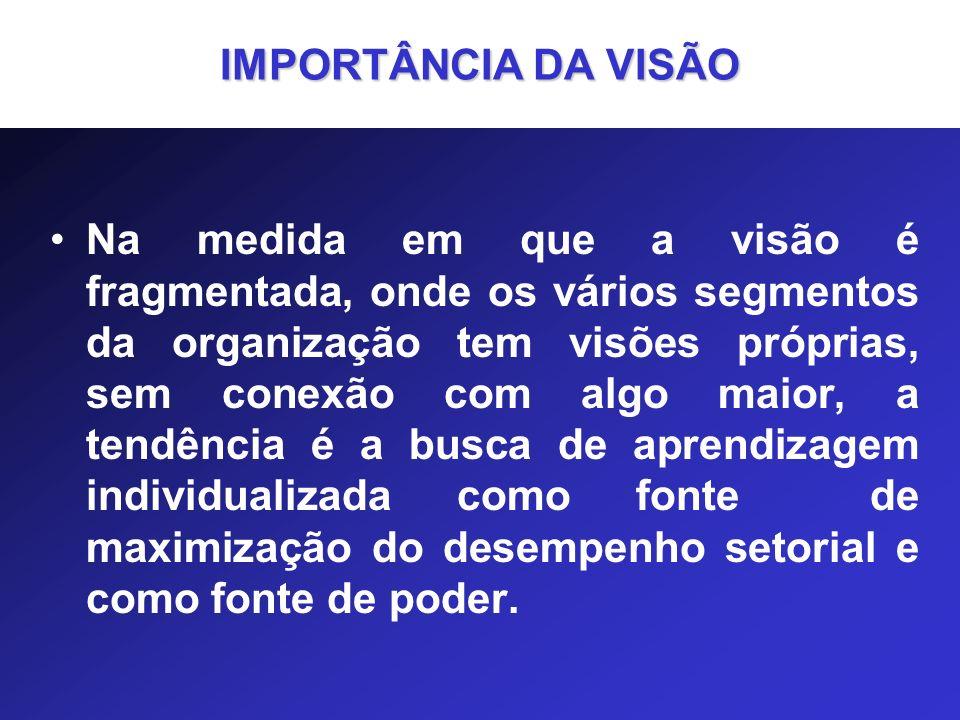 IMPORTÂNCIA DA VISÃO