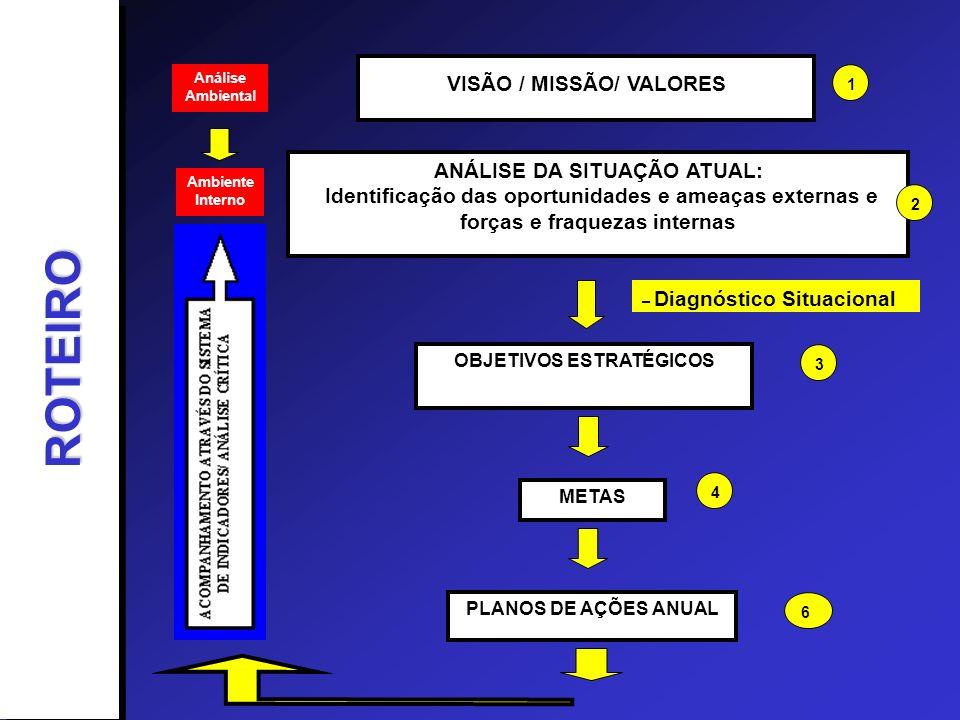 ROTEIRO VISÃO / MISSÃO/ VALORES ANÁLISE DA SITUAÇÃO ATUAL: