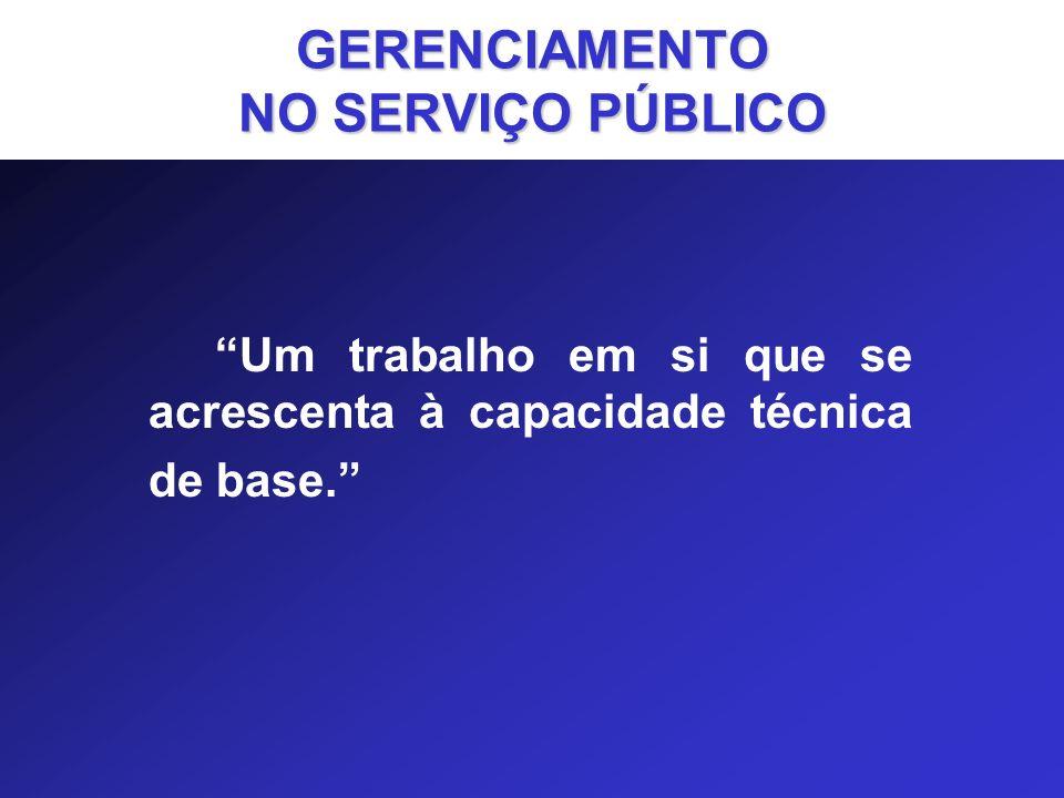 GERENCIAMENTO NO SERVIÇO PÚBLICO