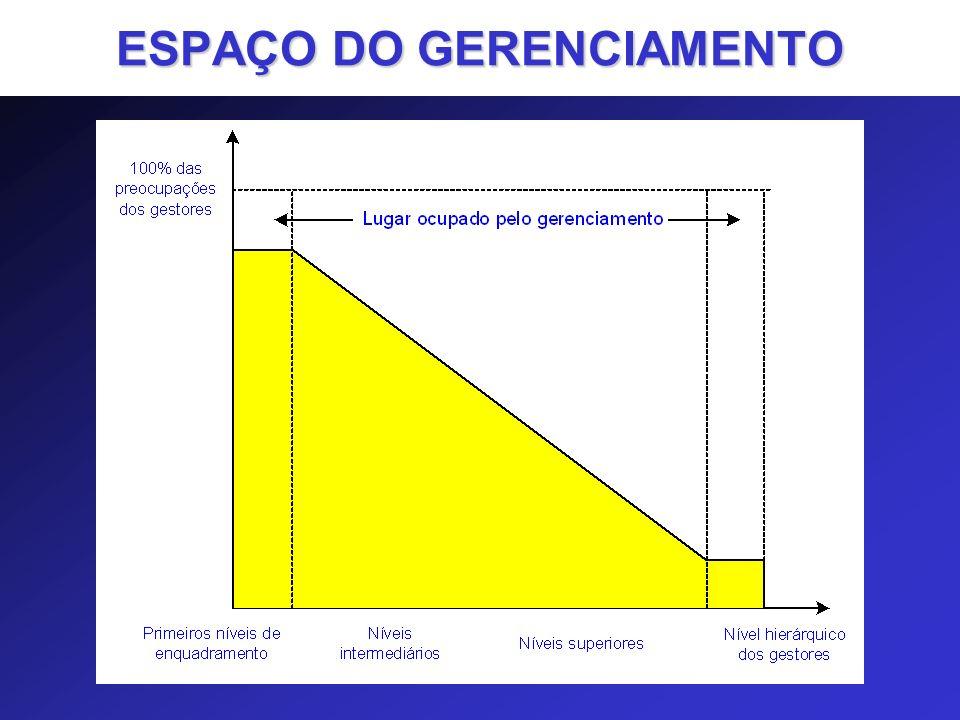 ESPAÇO DO GERENCIAMENTO