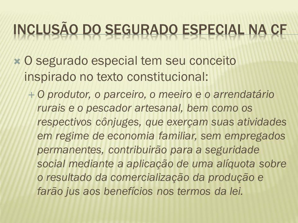 INCLUSÃO DO SEGURADO ESPECIAL NA CF